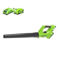 Greenworks Accu Bladblazer 24V